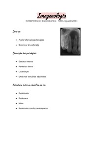 Imagenologia - Interpretação radiográfica - Patologias parte 1