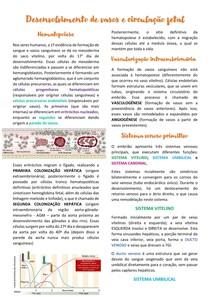 Desenvolvimento de vasos e circulação fetal