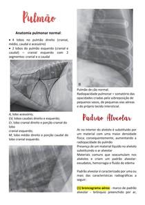 Padrões Pulmonares - Radiografias de pulmão (Veterinária)