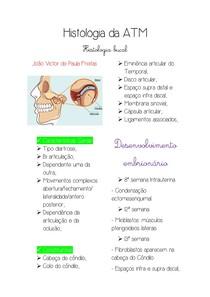 histologia da ATM