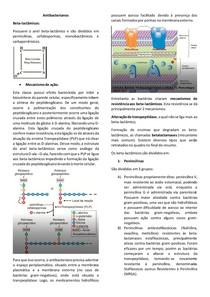 Antibacterianos beta-lactâmicos