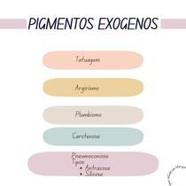 Patologia- Pigmentos Exógenos