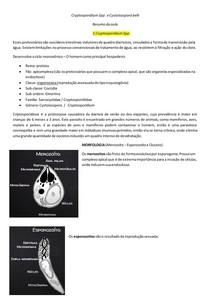Cryptosporidium Spp e Cystoisospora Belli (Criptosporidiose e Cistoisosporíase)