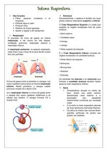 Resumo do Sistema Respiratório