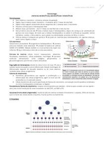 Anemias microcíticas, macrocíticas e hemolíticas
