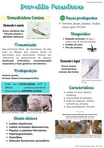 Dermatites Parasitárias cães e gatos