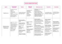 Tabela Cocos Gram positivos