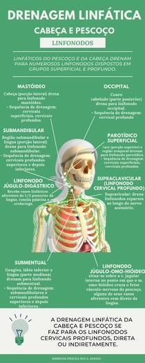 Infográfico: Drenagem Linfática - Linfonodos