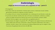 embriologia - desenvolvimento até a expulsão do feto parte 2