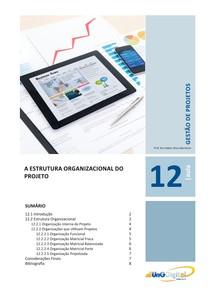 12_gestao_de_projetos-A estrutura organizacional do projeto