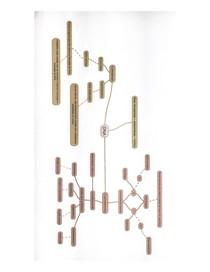 Mapa Mental de Biologia - DNA