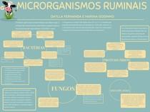 microrganismos ruminais mapa