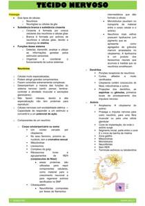 PROBLEMA 1_ Tecido nervoso (resumo) (1)