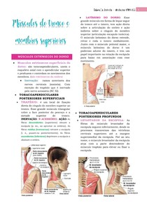 Anatomia do tronco e MEMBRO SUPERIOR músculos resumo MOORE