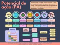 MAPA CONCEITUAL - POTENCIAL DE AÇÃO