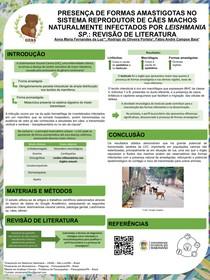 Presença de formas amastigotas no aparelho reprodutor de caes machos naturalmente infectados por Leishmania sp. (banner científico)