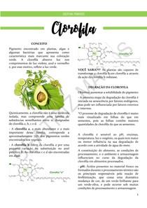Clorofila - Resumo (Pigmentos)