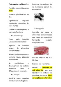 Enteropatia proliferativa