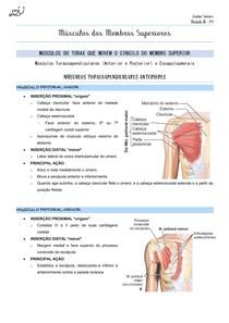 Músculos dos Membros Superiores