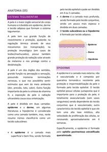 Anatomia (05) Sistema Tegumentar