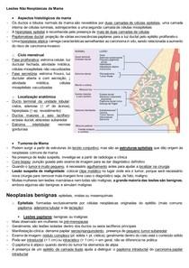 Patologia das Lesões Não Neoplásicas da Mama (Resumo)
