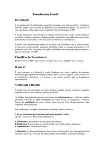 Toxoplasma_Gondii_resumo