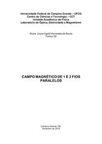 Relatório 14 - Campo magnético de 1 ou 2 fios longos