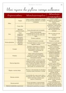Sistema nervoso autônomo (esquema)