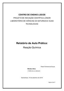 MODELO DE RELATÓRIO REAÇÕES QUIMICAS