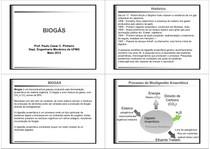 10-Biogas