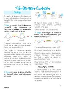 Via Glicolítica Oxidativa