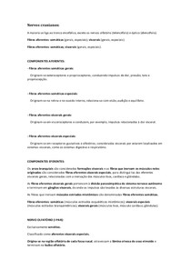 Nervos cranianos (neuroatomia)