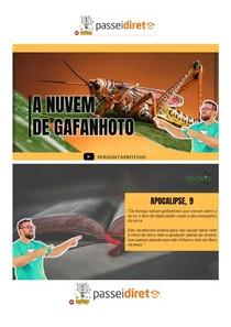 PD - A NÚVEM DE GAFANHOTOS - PROF TOID