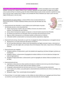 Sistema Imunológico - embriologia e anatomia