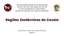 Regiões Zootécnicas dos Equinos