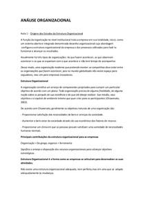 ANÁLISE ORGANIZACIONAL AULAS 1 A 10