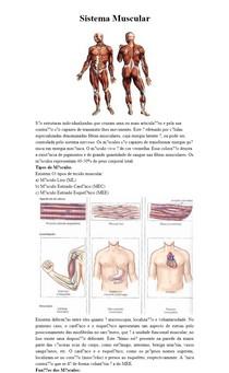 Resumo do Sistema Muscular
