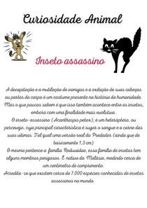 Curiosidade Animal- Inseto assassino