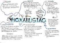 Mapa mental Moxabustão - Terapias complementares