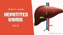 Grupo 5 - Hepatites Virais B e C