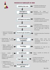 Resumo_Processo_de_ Fabricação_do_vinho