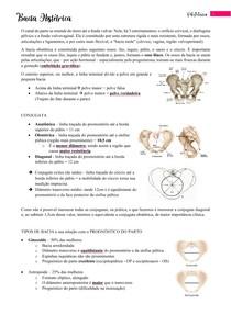 Bacia Obstétrica - Resumo + Questões