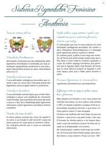 Anatomia Sistema Reprodutor Feminino
