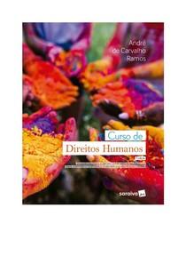 Curso de Direitos Humanos - André Carvalho Ramos
