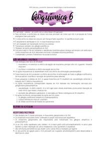 Bioquímica - Acetilcolina