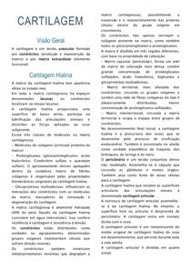 Resumo_histologia-cartilagem