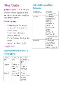 Fibras Dietéticas