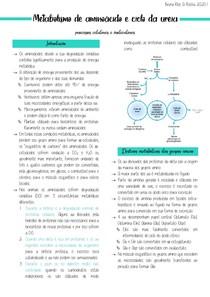Metabolismo dos aminoácidos + Ciclo da ureia