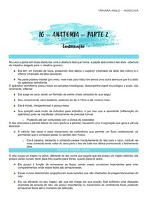 IG - ANATOMIA - PARTE 2