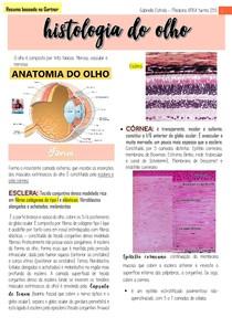 Histologia do olho e visão  resumo do Gartner com anotaçes de aula MEDICINA tratado de histologia em cores